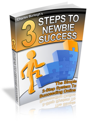 Product picture 3 Steps to Newbie Success With PLR